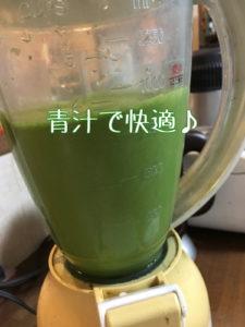 青汁 ミキサー