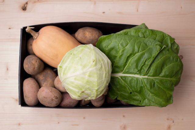 ケール,青汁,野菜