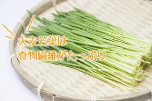 大麦若葉,食物繊維
