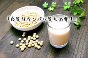 青汁 タンパク質