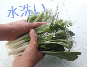 小松菜,農薬