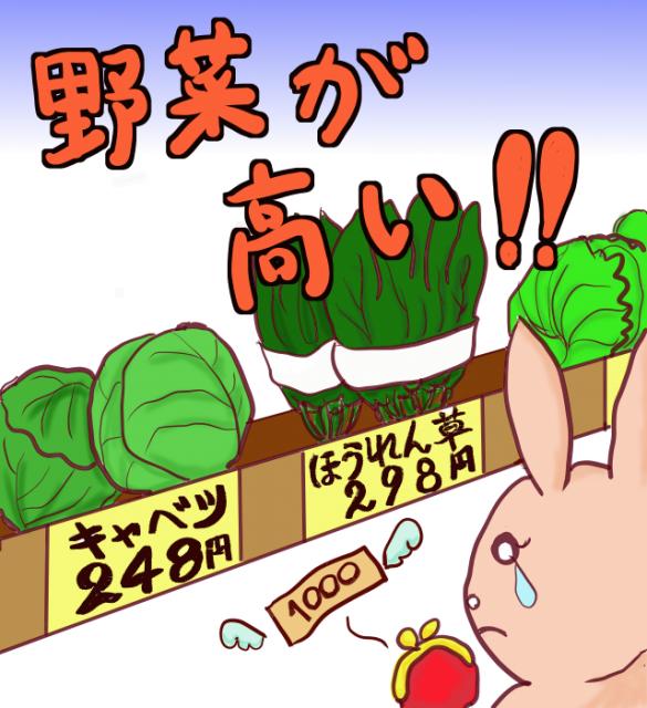 イラスト野菜が高い